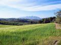 entorno-paisaje-4