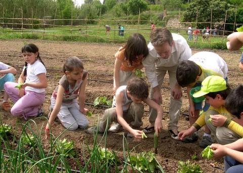 Huerto Ecológico - Can Julià